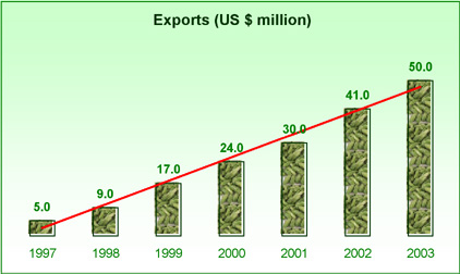 exportadexvo